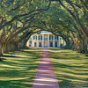 """OAK ALLEY PLANTATION""New Orleans, Louisiana.Print sizes available: 8""x12"", 10""x15"", 12""x18"", 16""x24"", 20""x30"", 24""x36"", 30""x45"""