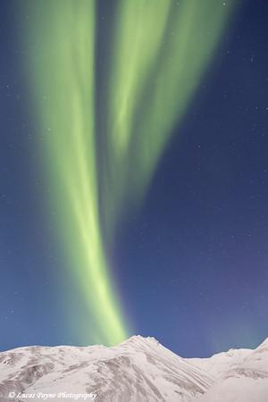 The Aurora Borealis (Northern Lights) dancing over the Brooks Range on the South Side of Atigun Pass, Arctic Alaska.<br /> <br /> January 08, 2015