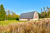 Barn and windmill along Yellow River State Forest Road in Allamakee County, Iowa<br /> <br /> October 16, 2017