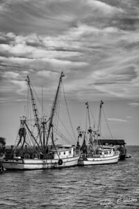 Shrimp Boat Lane II