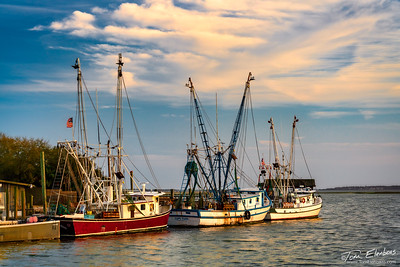 Shrimp Boat Lane I