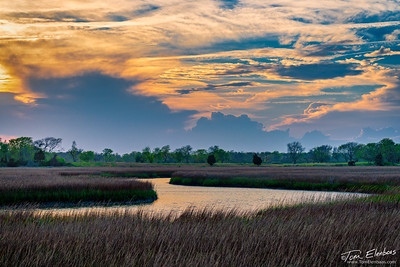 Salt Marsh Sunset I