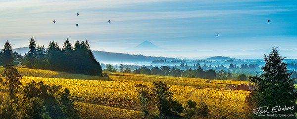 Willamette Valley Sunrise II