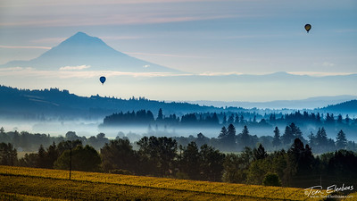 Willamette Valley Sunrise I