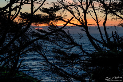 Cape Perpetua Sunset
