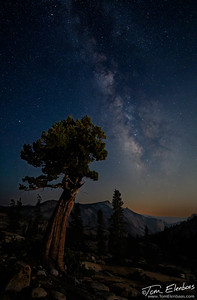 Olmsted Point Milky Way