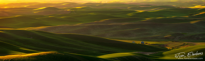 Steptoe Butte Sunset I