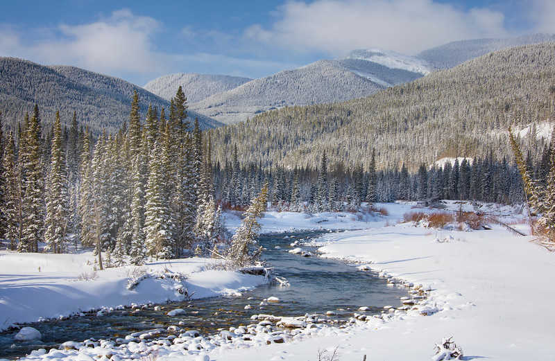 A Fresh Coat - Bragg Creek, Alberta