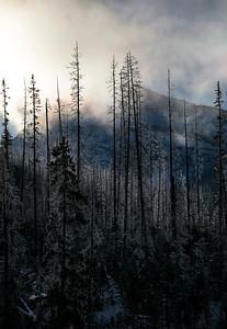 Beneath the Veil - Kootenays, British Columbia
