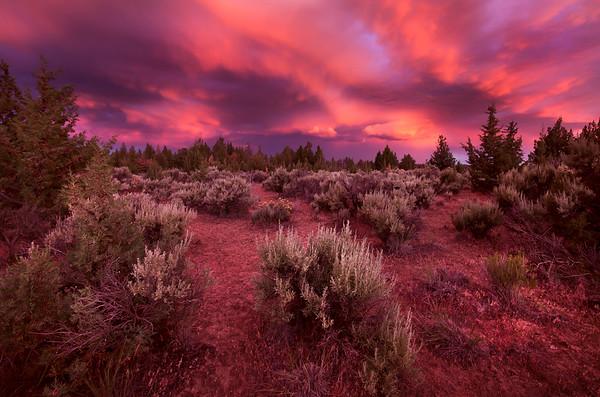 Under Fire - Terrebonne, Oregon