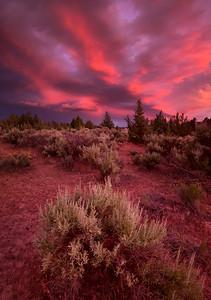 Nature's Fireworks - Terrebonne, Oregon