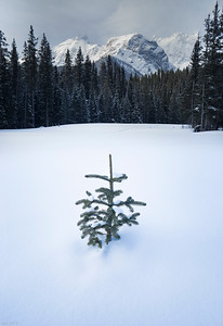Heat Wave - Spray Lakes, Alberta