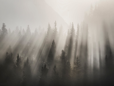 Mystic Light - Kananaskis, Alberta