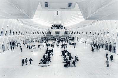 The oculus
