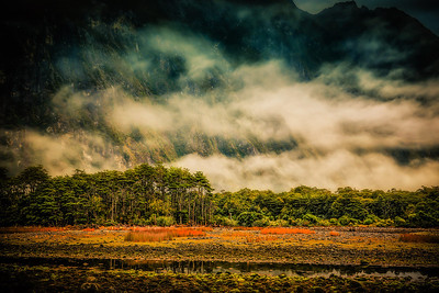 It's a Jungle Out There Milford Sound, New Zealand  Neither sand flies, nor slick rocks, nor tides drawing near Will deter us from venturing onward, my dear.  For the sights are too awesome, the moments too rare To miss out on the jungle we saw from out there.