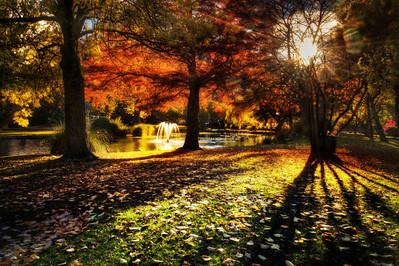 Queenstown Gardens Sunrise