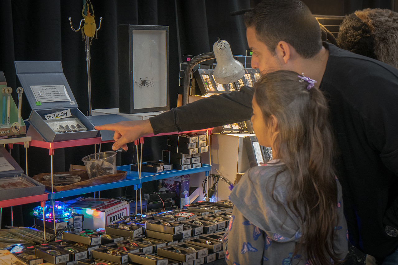 Dad and daughter explore the Bug Fair