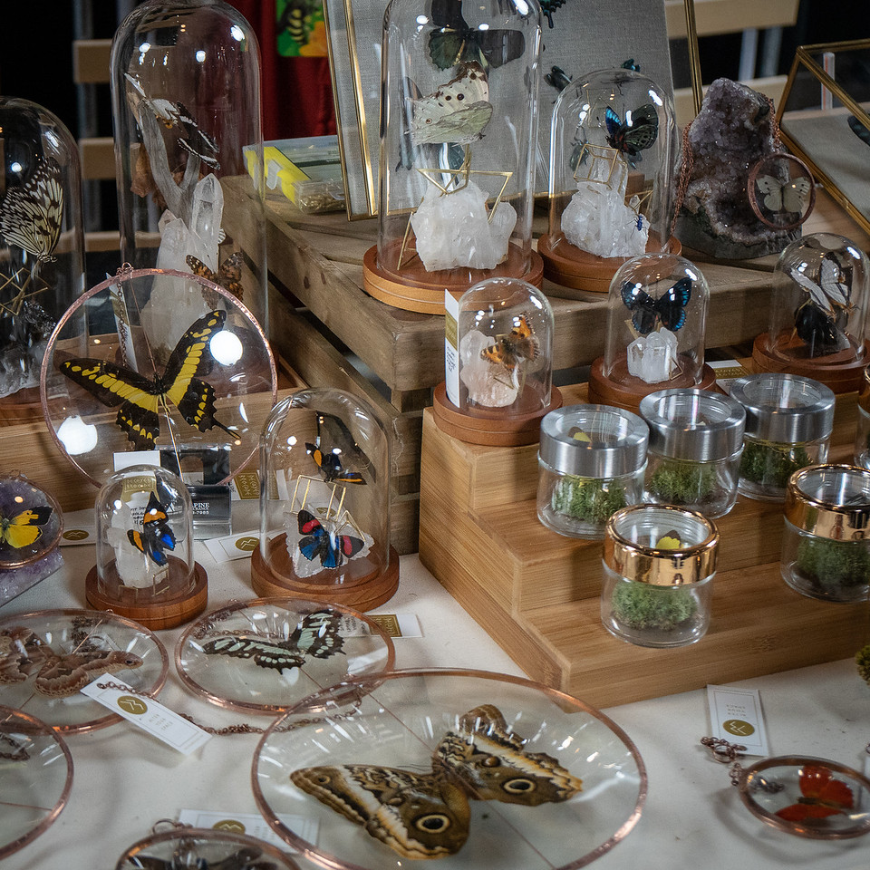 Glass and copper enclosures displaying butterflies, part of Decayed Brocade booth