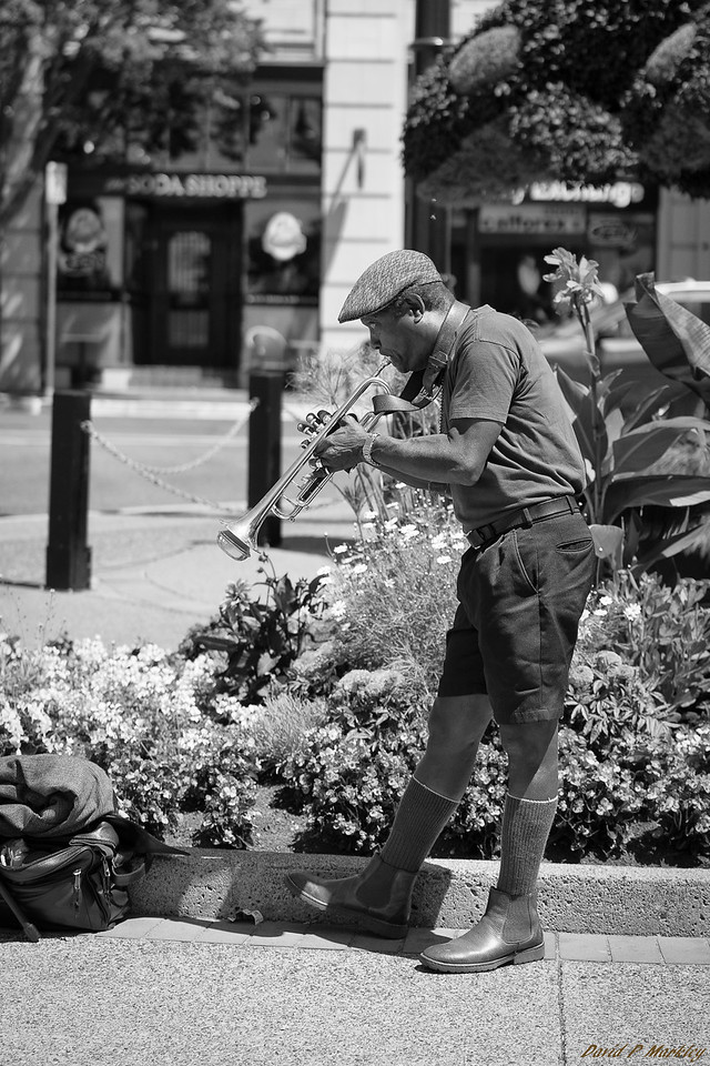 Canadian Horn Playing