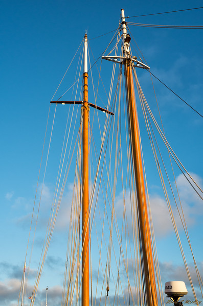 Might Masts
