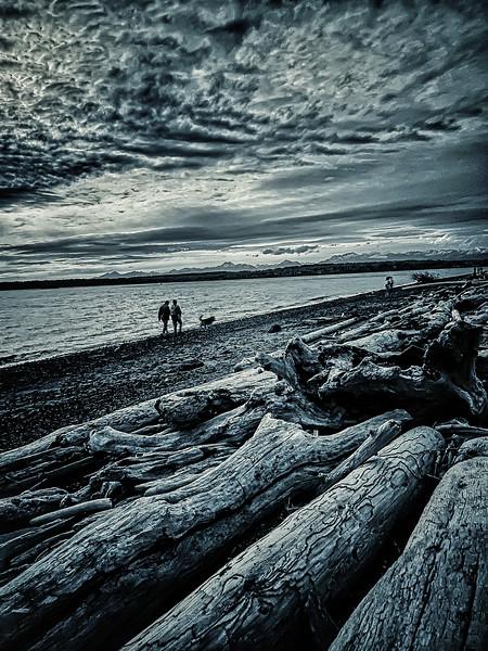 Ft. Lawton Beach, Discovery Park, Seattle