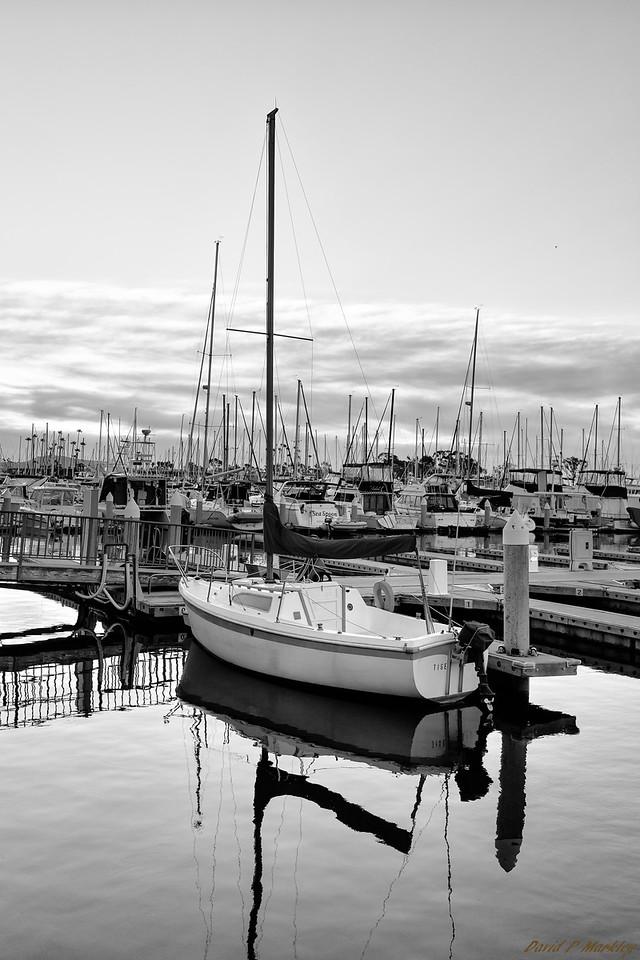 Harbor Boat