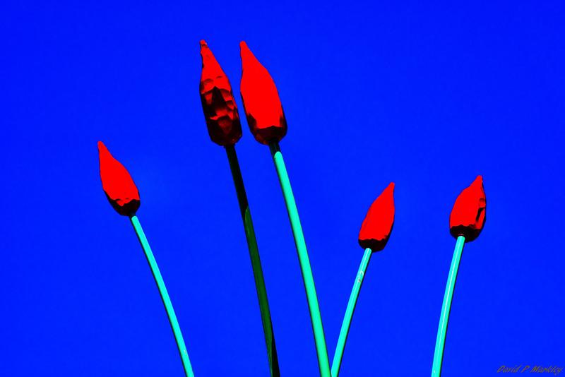 Tulips Statue