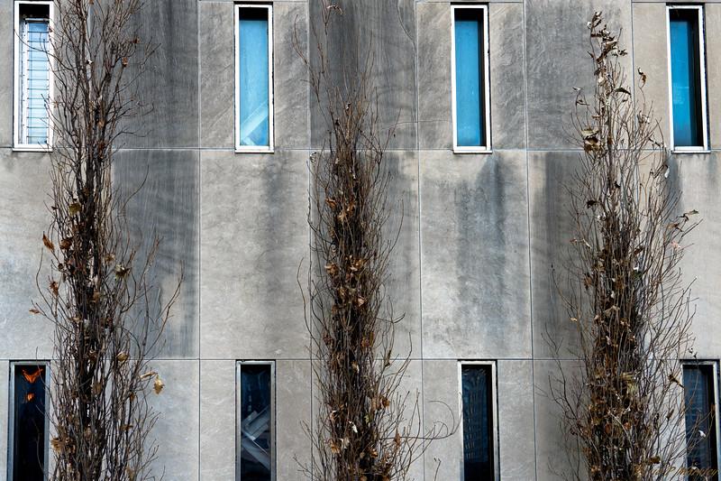 Thin Windows