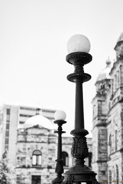 Legislative Lights
