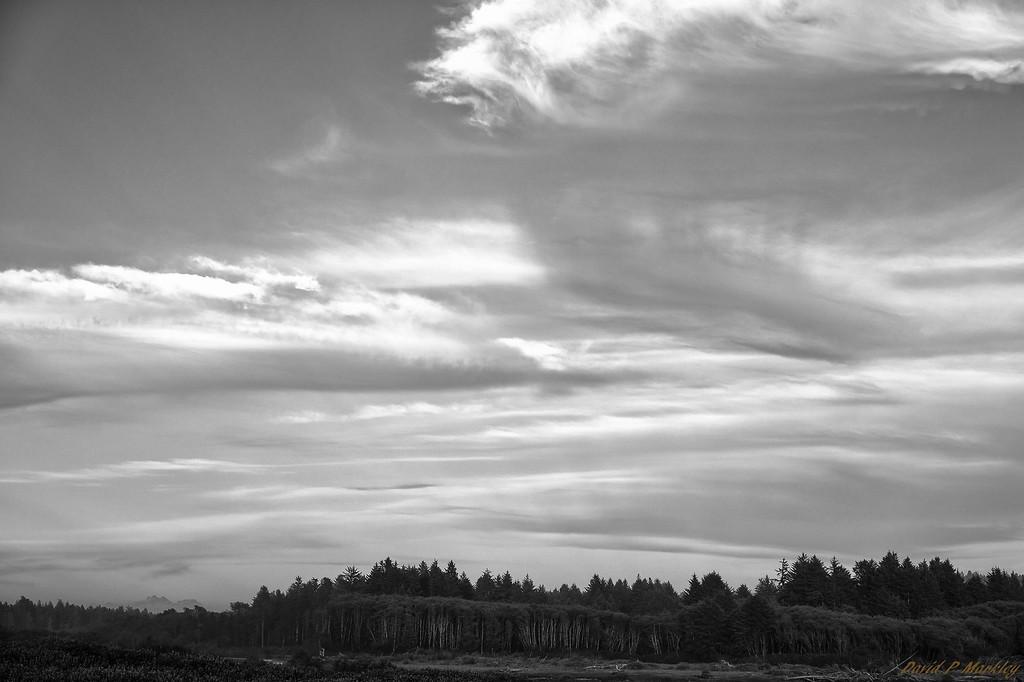 Cloud Strokes