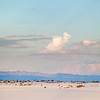 Moon over White Sands
