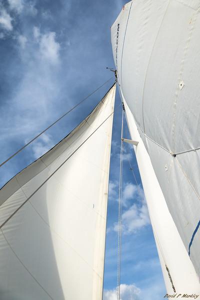 Sail Swirl