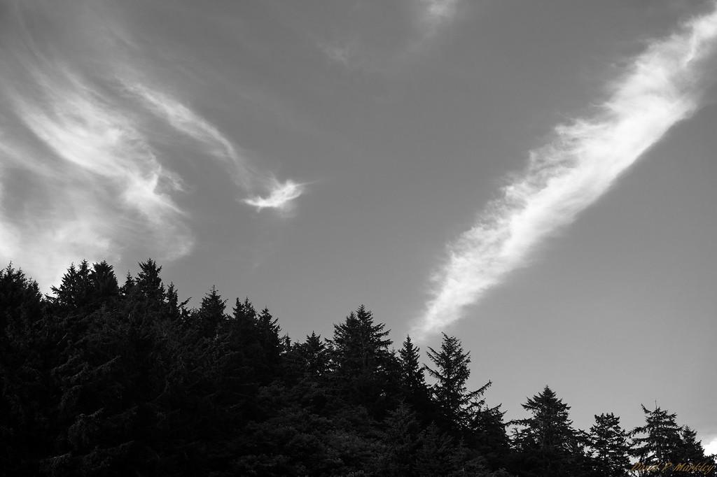 Cloud Paths