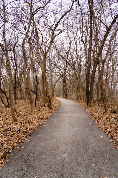 Bare Path