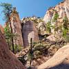 Tent Rocks View
