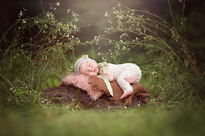 Middle Tennessee Newborn & Baby Photographer