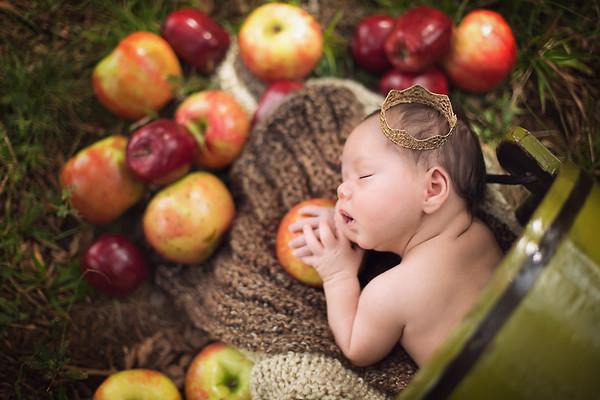Nashville Clarksville Springfield Newborn Photographer