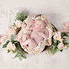 Newborn girl Pink white peach floral bowl greenery<br /> Houma Thibodaux newborn photographer