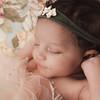 Wynter | Newborn Posed Photography