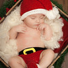 Wyatt | Newborn Posed Photography