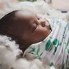 Milan | Newborn Posed Photography