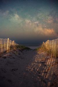 Jersey Shore Stars