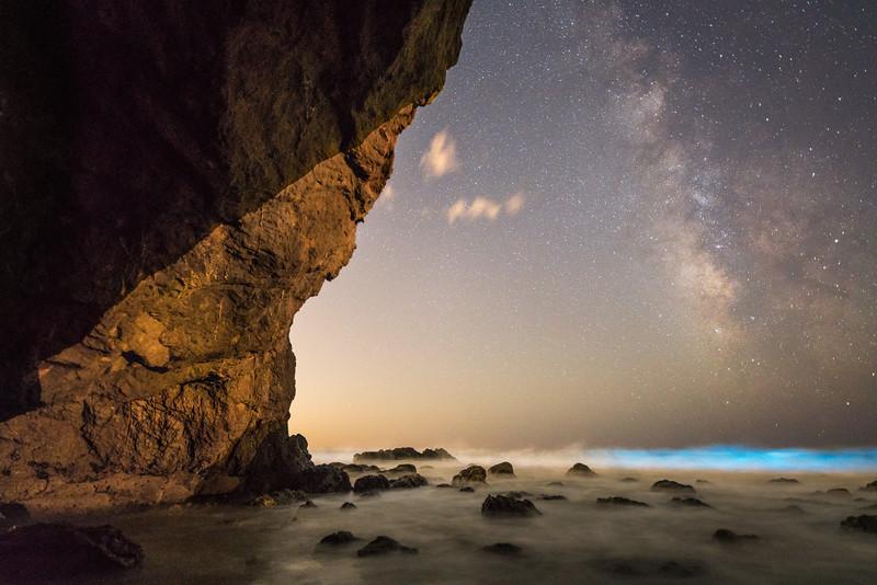 Malibu Bioluminesence