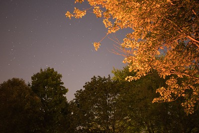 Beavercreek, Ohio  This long standing deciduous tree in my backyard became my focus one Autumn evening. My original intention was to experiment with star trails as the moon was nearly full and a clear sky with little to no clouds.   Using both a burning firepit situated to the left and my headlamp, I made a 30 second exposure showing the warm glow for a dreamlike appearance.   Heavenly and celestial. Happy accidents are where we grow the most.  © 2018 Ryan L. Taylor Photography. All Rights Reserved.