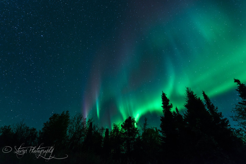 Dancing Angels - Aurora Borealis, Fairbanks, AK