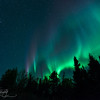 Dancing Angels - Aurora Borealis, Fairbanks, AK