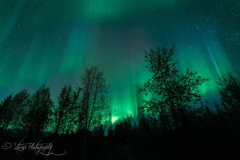 Angel's veil - Aurora Borealis, Fairbanks, AK
