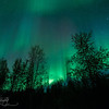 Angel's veil - Aurora Borealis, Fairbanks, AK
