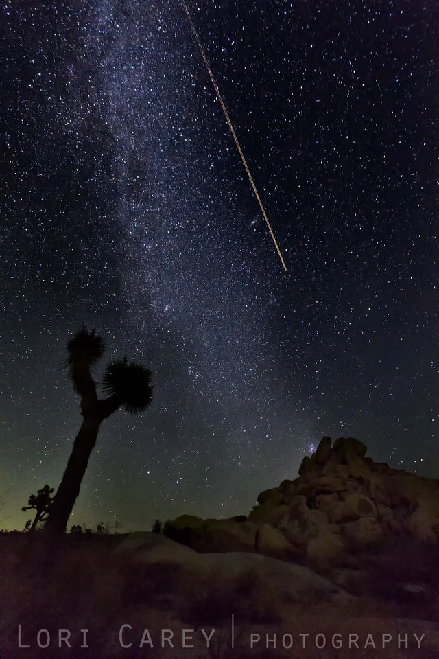 Northern end of Milky Way Galaxy and Perseid meteor, Joshua Tree National Park