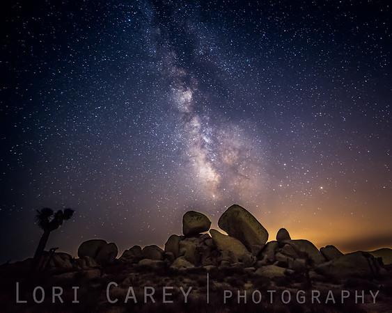 Milky Way in Joshua Tree National Park